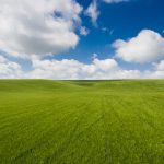 Unbelievably Clean Photo of Wheat Field with Clouds